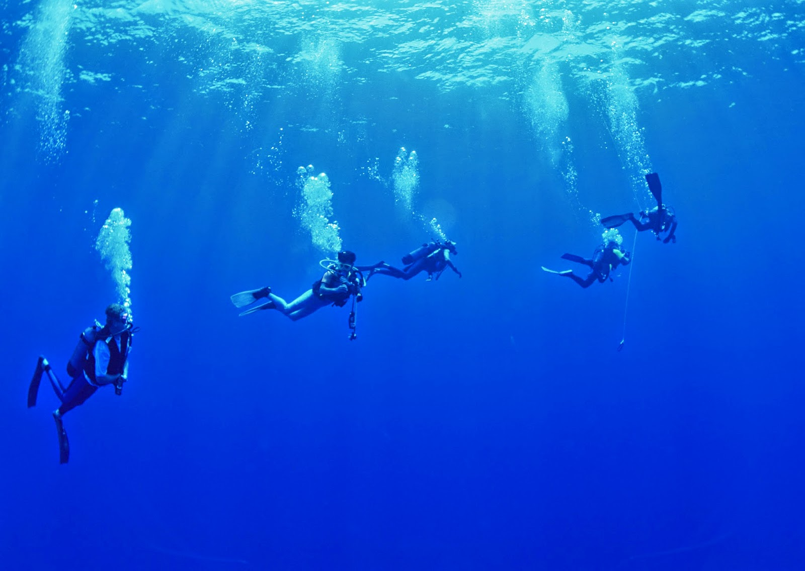 LEARN WITH THE BEST AND EXPERIENCED DIVERS